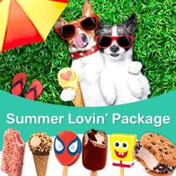 Summer Lovin Package